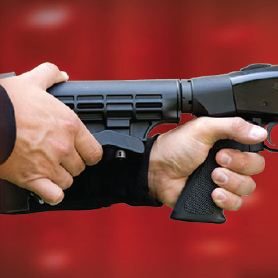 Pistol Grip with Adjustable Stock